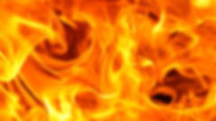 FIREE.jpg