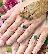 wedding dog pet san antonio metro pup sa venue