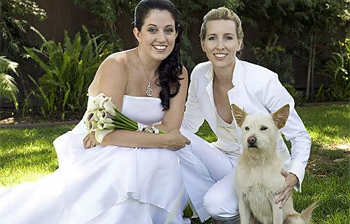 Metro Pup SA Wedding Pet Attendant