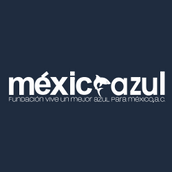 LOGO MEX AZUL BOLETIA.png
