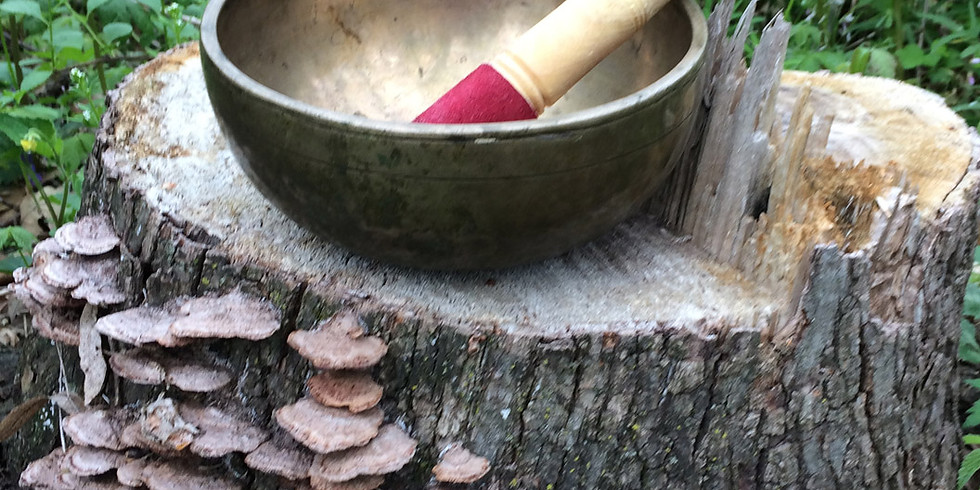 Learn to Heal with Singing Bowls - Level I