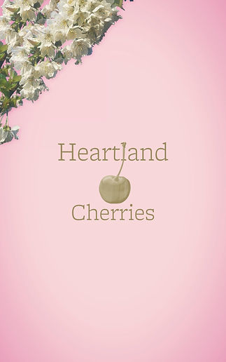 Jakimm Orchard_Heartland Cherries_Box.jp