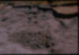 Hawksburn - 0004.tif