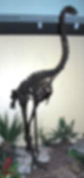 dinornis_maximus_fossil_bird_(moa).jpg