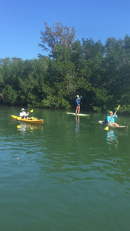 kayak, paddleboard tour, Boca Grande, Englewood, adaptive paddle, specia needs