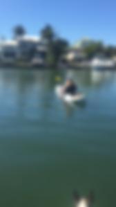 kayak tour Boca Grande, Placida, Englewood