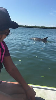 dolphin, paddleboard fun, Special Olympics