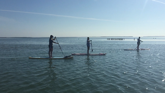 Boca Grande | Englewood | Placida | adaptive paddlboard | kayak | special needs | disability | adaptive