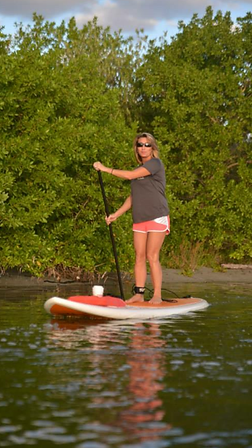 englewood, paddleboard tour guide