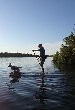 paddleboarding, adaptive, dog