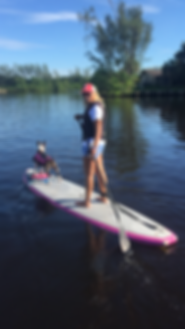 paddleboard, bull terrier, disability work programs, KDVS