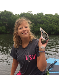 conch, adaptive paddle, Stump Pass, Don Pedro Island State Park