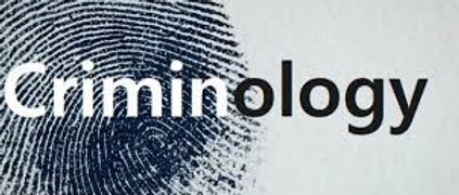 Criminology Diploma online