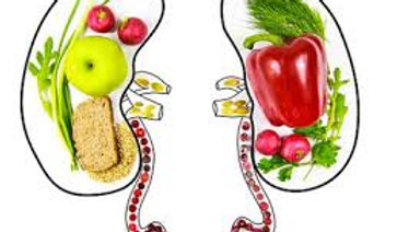 Certificate Course in Renal Nutrition