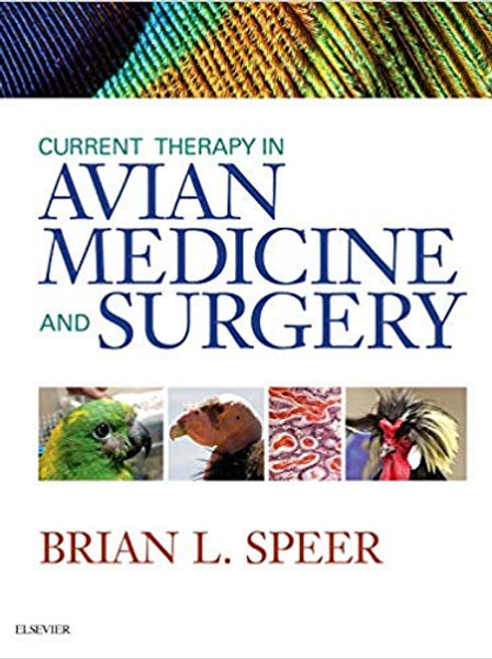 Current Therapy in Avian Medicine and Surgery 1st Edition