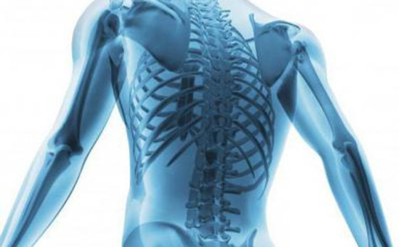 Postgraduate Diploma Rheumatology & Musculoskeletal Medicine online