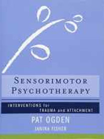 Sensorimotor Psychotherapy: Interventions for Trauma and Attachment (Norton Seri