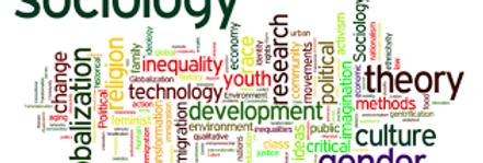PEARSON + Prometric  McQs in Sociology