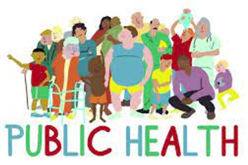 MPH Master in Public Health (Online)