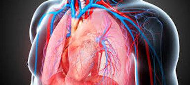 PEARSON + Prometric  McQs in Cardio thoracic Surgery