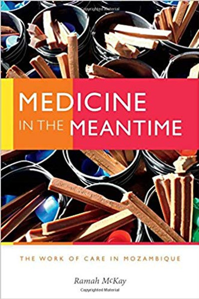 Medicine in the Meantime: The Work of Care in Mozambique (Critical Global Health