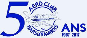 Affiche 50 ans Aéroclub Barsuraubois