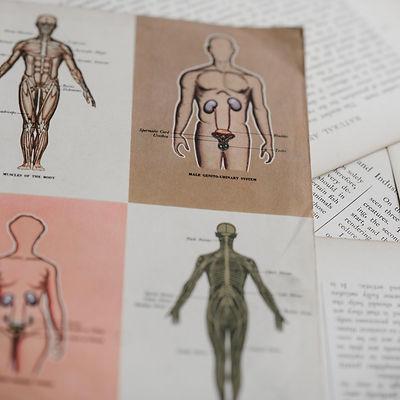 medical diagrams 2MB.jpg