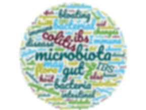 microbiota word cloud.jpg
