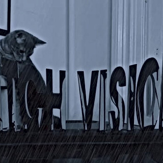 DITCH VISION
