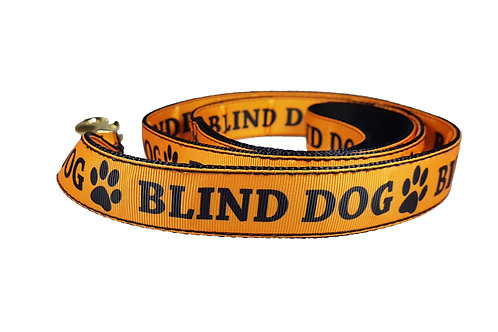 25mm Wide Blind Dog Lead