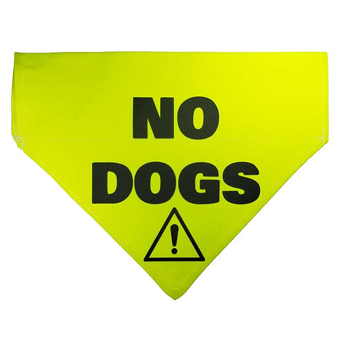 Medium NO DOGS Bandana