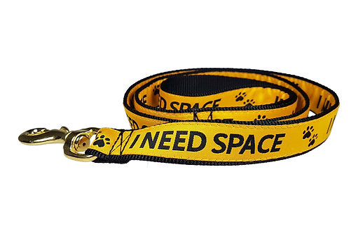 25mm Wide I Need Space Lead