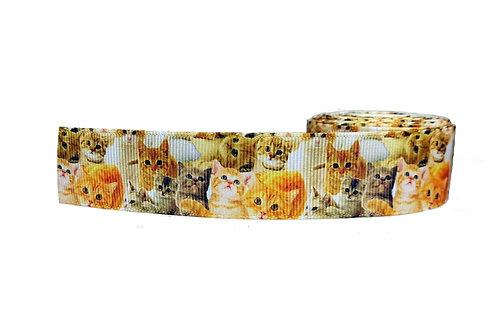 25mm Wide Kittens Dog Collar