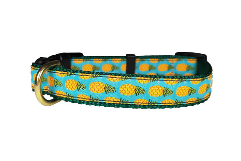 19mm Wide Pineapples Collar