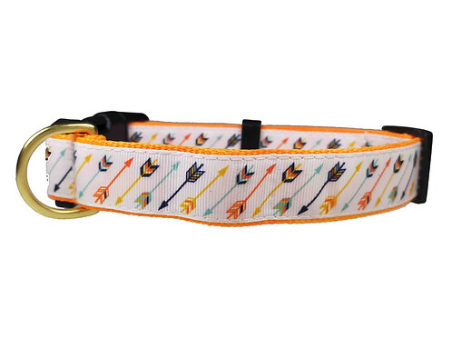 25mm Wide Multi Coloured Arrows Dog Collar