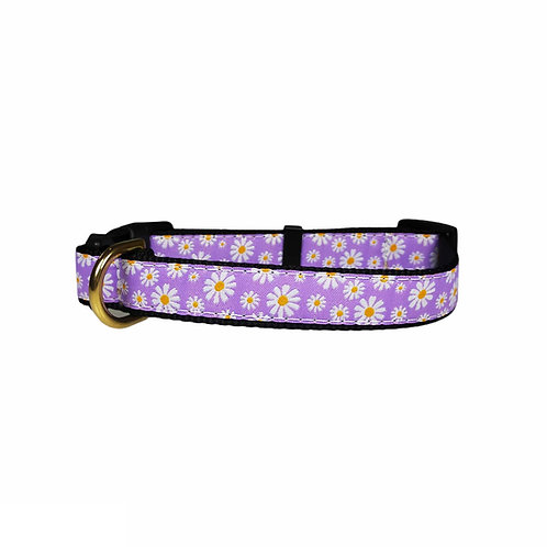 25mm Wide Daisies on Purple Dog Collar