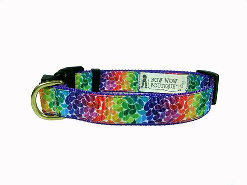 25mm Wide Rainbow Petals Dog Collar
