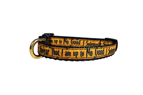12.7mm Wide Up to No Good Collar