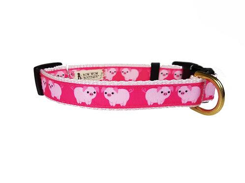 19mm Wide Piggys Collar