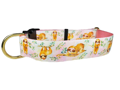 38mm Wide Sloths Dog Collar