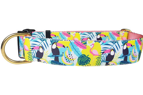 38mm Wide Tucans & Flamingos Dog Collar