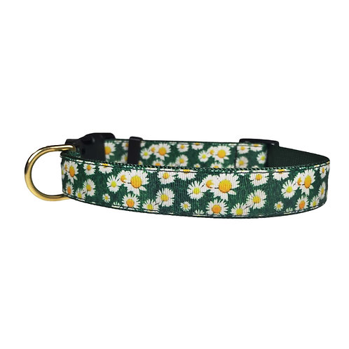 25mm Wide Field of Daisies Dog Collar