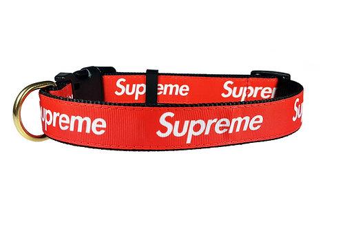 25mm Wide Supreme Dog Collar