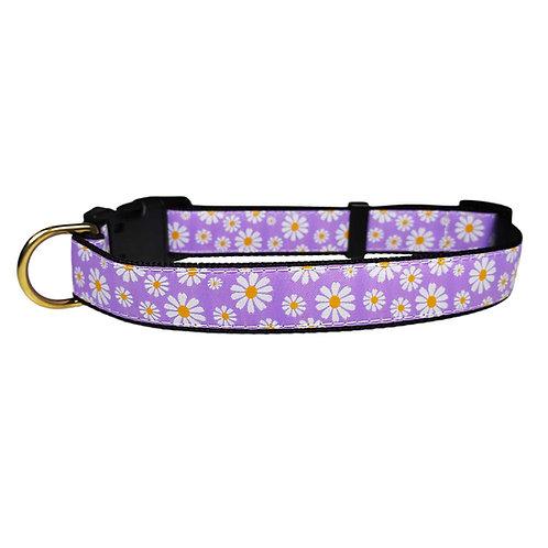 19mm Wide Daisies on Purple Collar