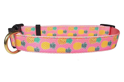 25mm Wide Pineapples Dog Collar