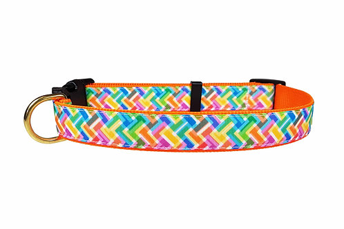 25mm Wide Colourful Zig Zags Dog Collar