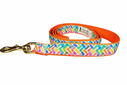 25mm Wide Colourful Zig Zag Lead