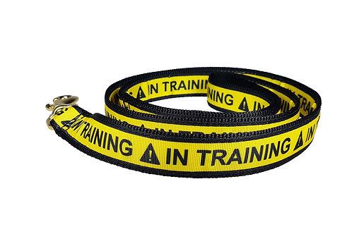 25mm Wide In Training Lead