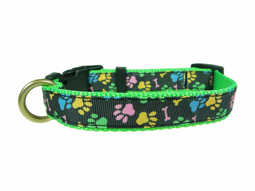 19mm Wide Multi Coloured Paw Prints Collar