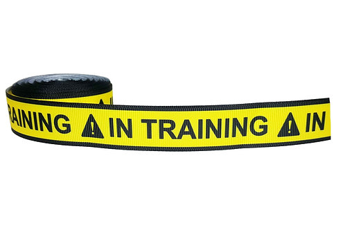 25mm Wide In Training Martingale Collar